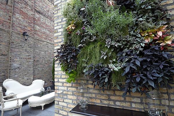 Photo of Chicago event space venue Celeste's Rooftop Garden